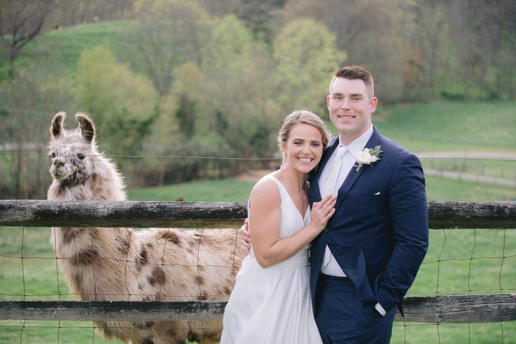 Claxton Farms Wedding with llama