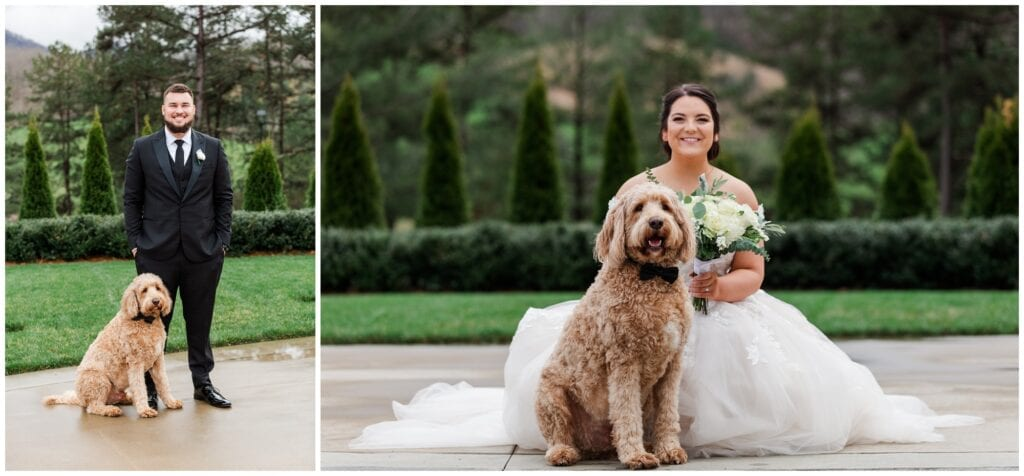 bride and groom portraits with dog